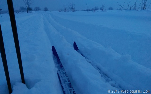 schi fond în comuna Berceni